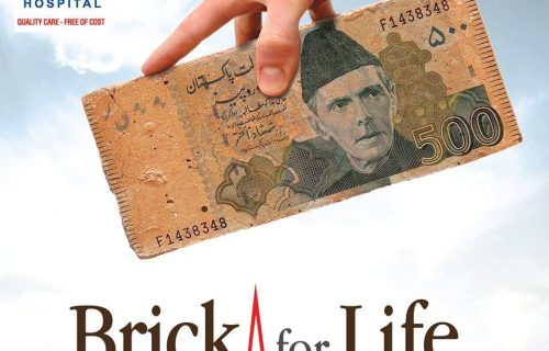 Brick for Life